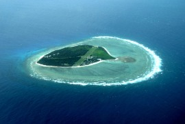 Ariel view of Lady Elliot Island from the plane.