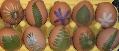 Eggs with flowers