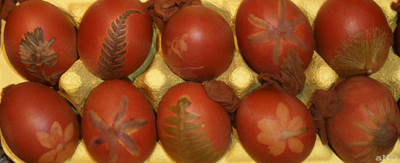 Onion skin dyed eggs